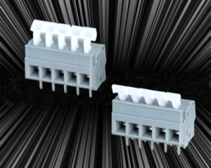 Spring Terminal Block for Cable to Board Connection with Dual Row Pin pictures & photos