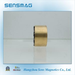 Permanent AlNiCo Magnet Ring Assembly for Motor, Generator pictures & photos