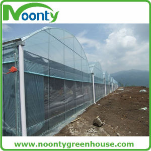 High-Quality Film Multi-Span Greenhouse, Arch-Type pictures & photos