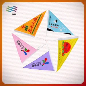 20*30cm Plastic Pole Silk Polyester Hand Waving Flags pictures & photos