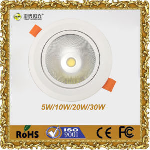 LED Recessed Light Manufacturer 30W COB Downlight pictures & photos