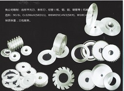 Circular Blades Saws in Packing Industry pictures & photos