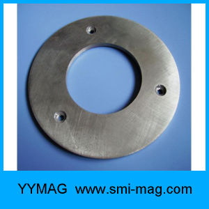 Ring Magnet AlNiCo for Meters pictures & photos