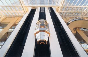 Panoramic Lift Small Machine Passenger Lift Hospital Elevator Sightseeing Lift pictures & photos