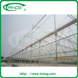 Multi Span Plastic Greenhouse in film cover pictures & photos