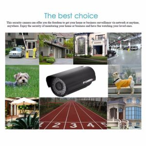 2.0MP Waterproof Outdoor/Indoor Security IP Wireless Camera pictures & photos
