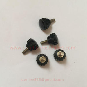 Wholesales Glue Head Screw Nut pictures & photos