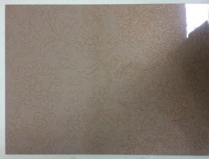 Embossed Steel Sheet, for Samsung Refrigerator Door Panel pictures & photos