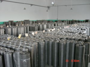 Stainless Steel Wire Mesh 304/316 pictures & photos