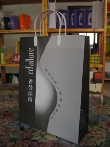 Elegant Plastic Shopping Bag (PP-01) pictures & photos