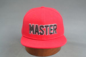 Master Flat Bill Snapback Hip-Hop Hat pictures & photos