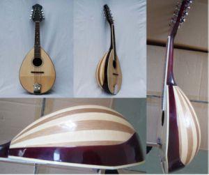 Mandolin (M-40) pictures & photos