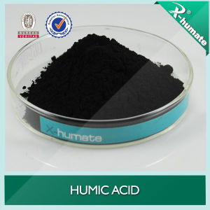 Natural Humic Acid From Leonardite pictures & photos