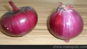 2017 New Fresh Onion with High Quality pictures & photos