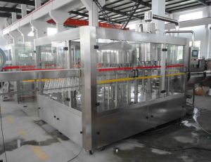 China Manufacturer of Mineral Water Production Line pictures & photos
