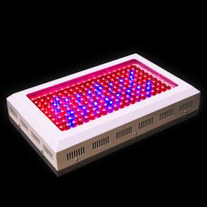 200x1W High Power LED Grow Light