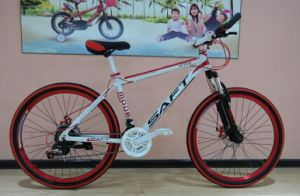 "26""24 Sp Aluminum Alloy Frame China Mountain Bike MTB-063 pictures & photos"