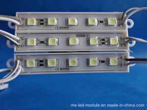 High Brightness Factory Selling DC12 Epoxy LED Module with 5pieces LED pictures & photos