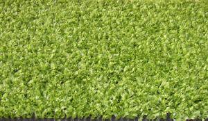 Artificial Grass (AF0903)