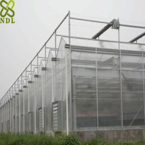 Low Cost PC Sheet Vegetable Greenhouse pictures & photos