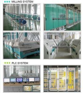300T/24H flour milling plant pictures & photos