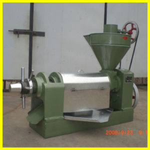 Sunflower cooking Oil Presser (6YL-80) pictures & photos