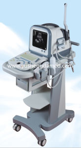 The Cheapest Laptop Ultrasound Scanner with Convex Probe Ysd1308A pictures & photos