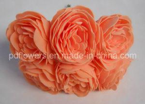 Foam Poeny Rose