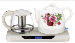 Professional Manufacturer of Electric Kettle (T101)