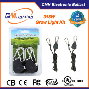 UL Approved 315W CMH Ballast with LED Grow Light for Gardening pictures & photos