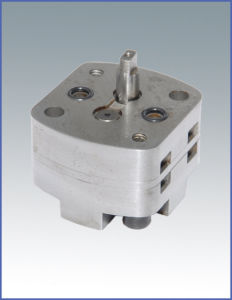 Reversible Gear Pump (CBT1S)