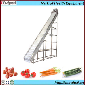 Screw Conveyor/Transfer Machine for Fruits pictures & photos