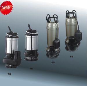 Submersibel Pump with CE and UL (QDX) pictures & photos