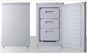 Standing Freezer (BD-88) pictures & photos