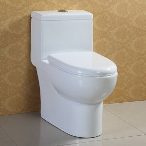 Siphonic Flushing Water Saving Toilet Bowl