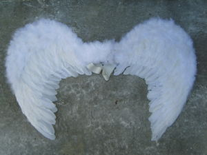 Handmade Party Feather Angle Wings pictures & photos