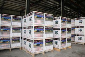 Genset Fusinda Fd2500 Hot Promotion Bensin Mesin Generator pictures & photos