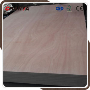 Oukume/Bintangor/Sepele Veneer Faced Plywood From China pictures & photos