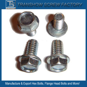 China Wholesale Cheap Price Zinc Galvanized DIN6921 Hex Flange Bolt pictures & photos