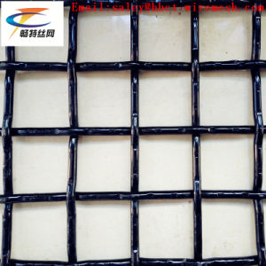 Woven Wire Mesh pictures & photos