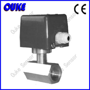 CE Approved Stainless Steel Paddle Flow Switch pictures & photos
