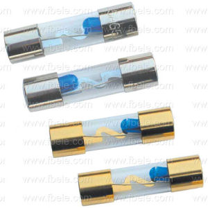 Fh-601 Glass Tube Fuse Thermal Fuse pictures & photos