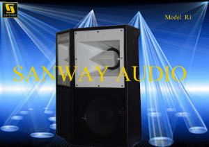 12 Inch Audio Sound PA Speaker pictures & photos
