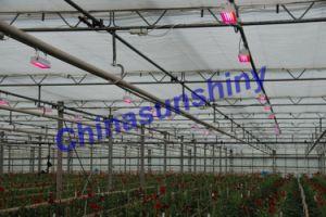 LED Plant Grow / Plant Light (CSS-DP)