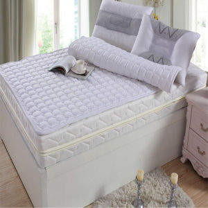 Hotel Used Cheap Polyester Cotton Quilted Mattress Pad/Mattress (DPF10154) pictures & photos