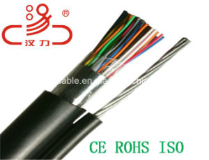 Communication Cable 50pair Outdoor Telephone Cable/Computer Cable/Data Cable/Communication Cable/Audio Cable/Connector/Network Cable/Linan Cable pictures & photos