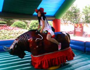Best Selling Bull Riding Bull Riding Game Bull pictures & photos