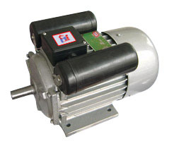 YC Single-Phase Dual-Capacitor Induction Motor pictures & photos