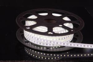 220V/110V IP67 Waterproof LED Light LED Strip pictures & photos