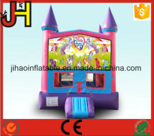 Inflatable Theme Bouncer for Kids pictures & photos